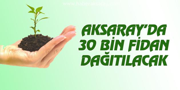 Aksaray'da 30 bin fidan dağıtılacak