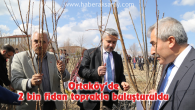 Ortaköy'de 2 bin fidan toprakla buluşturuldu