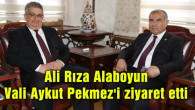 Ali Rıza Alaboyun Vali Aykut Pekmez'i ziyaret etti