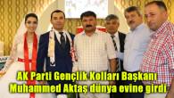 AK Parti Gençlik Kolları Başkanı Aktaş dünya evine girdi