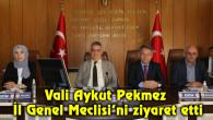 Vali Aykut Pekmez İl Genel Meclisi'ni ziyaret etti