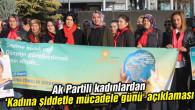Ak Partili kadınlardan 'Kadına şiddetle mücadele günü' açıklaması