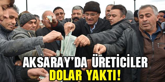 Aksaray'da üreticiler hayvan pazarında dolar yaktı!