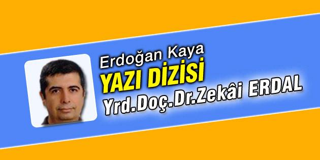 Erdoğan Kaya yazı dizisi