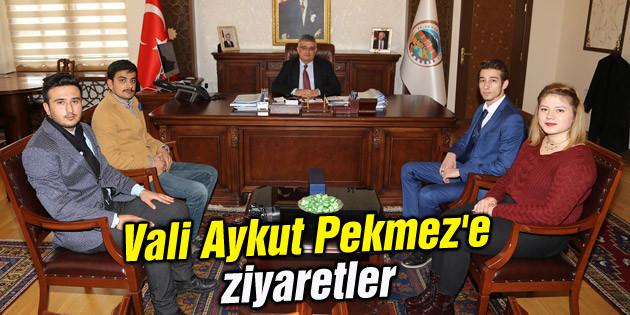 Vali Aykut Pekmez'e ziyaretler