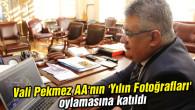 Vali Pekmez AA'nın 'Yılın Fotoğrafları' oylamasına katıldı