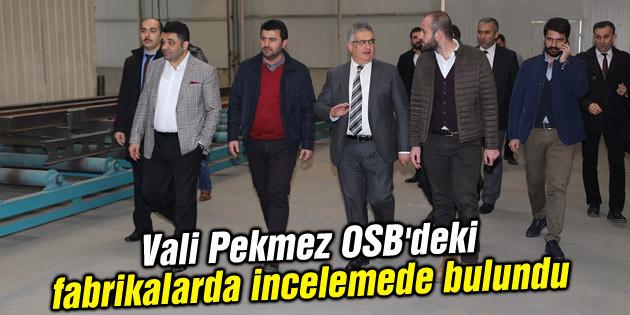 Vali Pekmez OSB'deki fabrikalarda incelemede bulundu