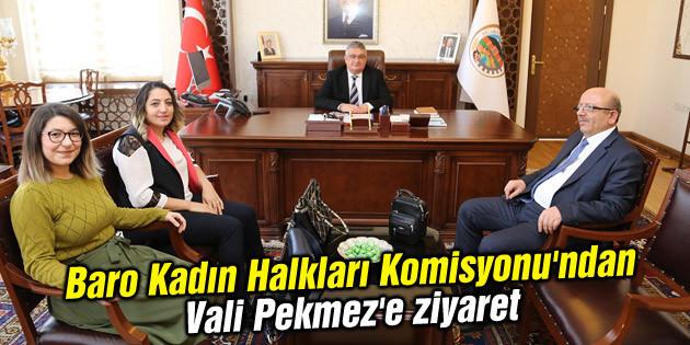 Aksaray Barosu Kadın Halkları Komisyonu'ndan Vali Pekmez'e ziyaret