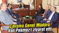 Çalışma Genel Müdürü Nurcan Önder Vali Pekmez'i ziyaret etti
