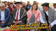 Aksaray'da 2017 yılı hasat dönemi başladı