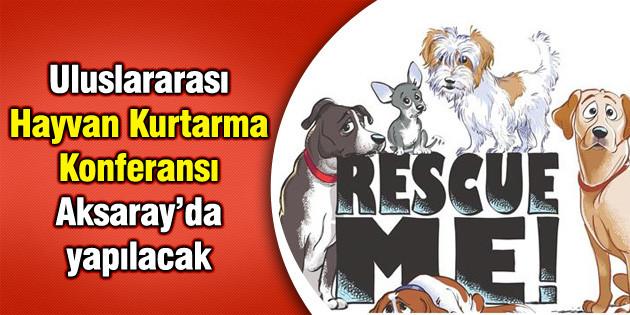 Uluslararası Hayvan Kurtarma Konferansı Aksaray'da yapılacak