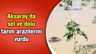 Sel ve dolu tarım arazilerini vurdu