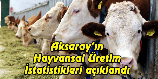 Aksaray'ın Hayvansal Üretim İstatistikleri açıklandı