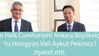 Çin Büyükelçisi Hongyan Vali Pekmez'i ziyaret etti