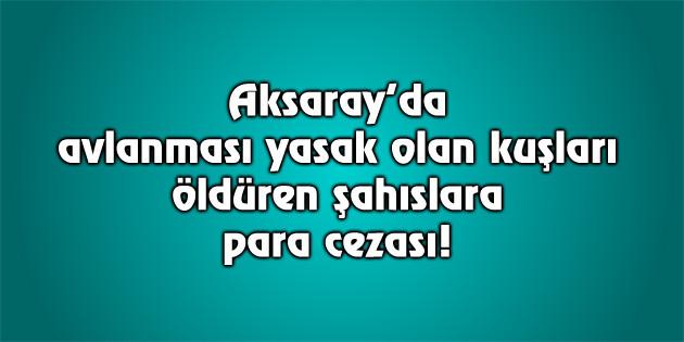 Aksaray'da avcılara 20 bin lira para cezası kesildi