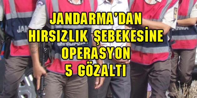 Jandarma'dan hırsızlık operasyonu: 5 gözaltı
