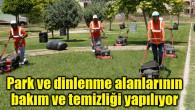 Aksaray'da park ve dinlenme alanlarının bakım ve temizliği yapılıyor