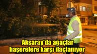 Aksaray'da ağaçlar haşerelere karşı ilaçlanıyor