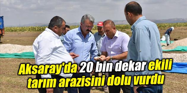 Aksaray'da 20 bin dekar ekili tarım arazisini dolu vurdu