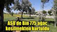 EBYS ile üç yılda bin 775 ağaç kesilmekten kurtuldu