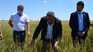 CHP Niğde Milletvekili Gürer Eskil'de çiftçileri ziyaret etti