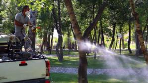 Aksaray genelinde haşere mücadelesi devam ediyor