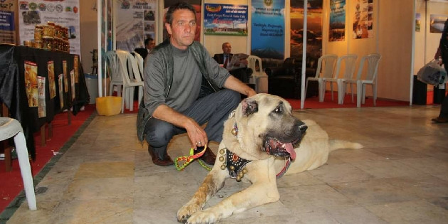 AKMİD Başkanı: Anadolu Aslanı, Aksaray Malaklısı'dır