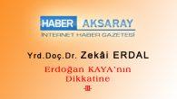 Erdoğan Kaya'nın Dikkatine -III-