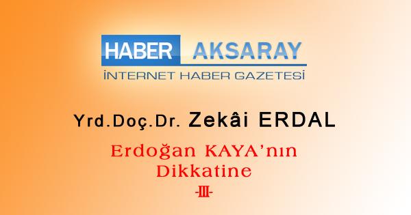 erdogan-kaya-3