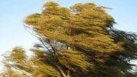 Meteorolojiden kuvvetli rüzgar ve fırtına uyarısı