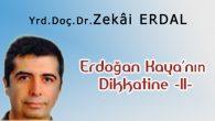 Erdoğan Kaya'nın Dikkatine -II-