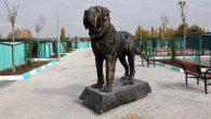 'Malaklı Irkı Köpekleri Koruma ve Üretme Merkezi' kuruldu