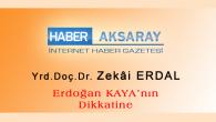 Erdoğan Kaya'nın Dikkatine -IV-