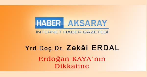 erdogan-kaya-4