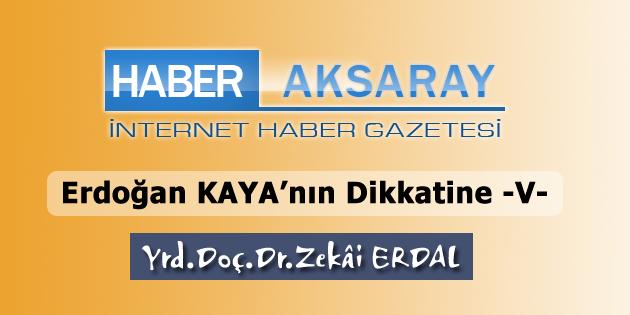 erdogan-kaya-5