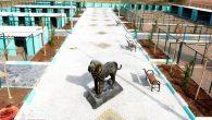 Modern Hayvan Rehabilitasyon Merkezi kuruldu