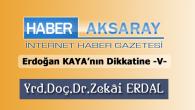 Erdoğan Kaya'nın Dikkatine -V-