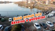 Balık yemek için Aksaray'a geliyorlar