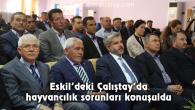 Eskil'deki Çalıştay'da hayvancılık sorunları konuşuldu