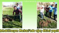 Rehabilitasyon Merkezi'nde ağaç dikimi yapıldı