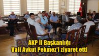 AKP İl Başkanlığı Vali Aykut Pekmez'i ziyaret etti
