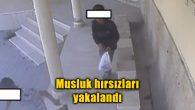 Musluk hırsızları yakalandı