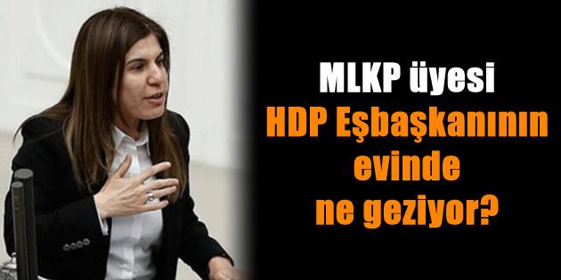 ilknur-inceoz-hdp-mlkp