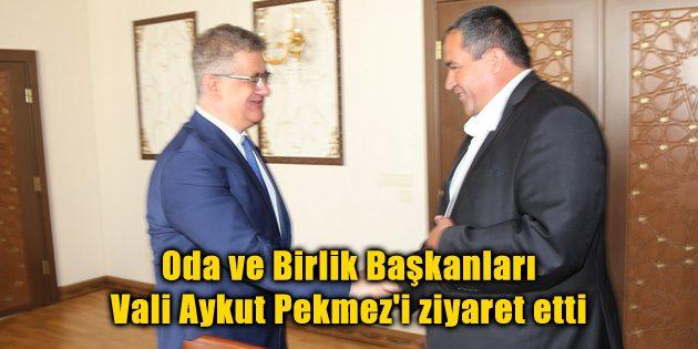 Oda ve Birlik Başkanları Vali Aykut Pekmez'i ziyaret etti