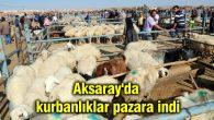 Aksaray'da kurbanlıklar pazara indi
