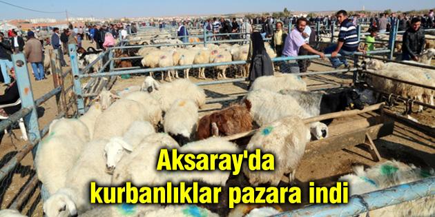 aksaray-da-kurbanliklar-pazara-indi
