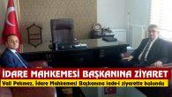 Vali Pekmez'den İdare Mahkemesi Başkanına iade-i ziyaret