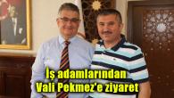 İş adamlarından Vali Pekmez'e ziyaret