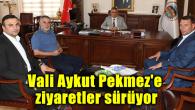 Vali Aykut Pekmez'e ziyaretler sürüyor