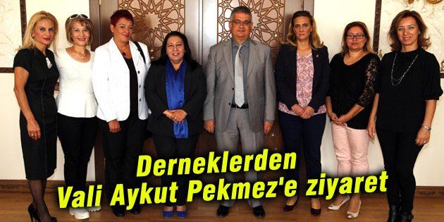 Derneklerden Vali Aykut Pekmez'e ziyaret